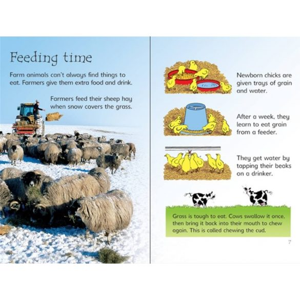 Beginners - Farm animals