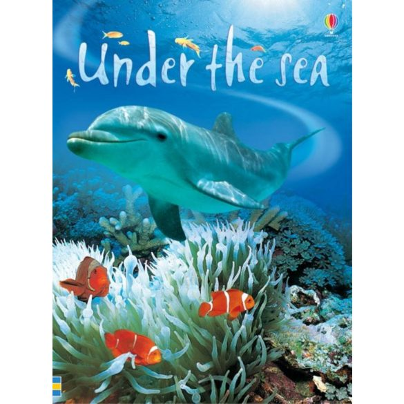 Beginners - Under the sea