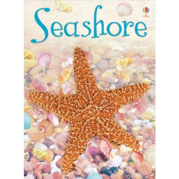 Beginners: Seashore