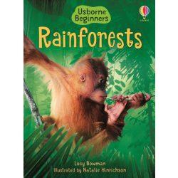 Beginners - Rainforest