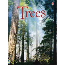 Beginners - Trees