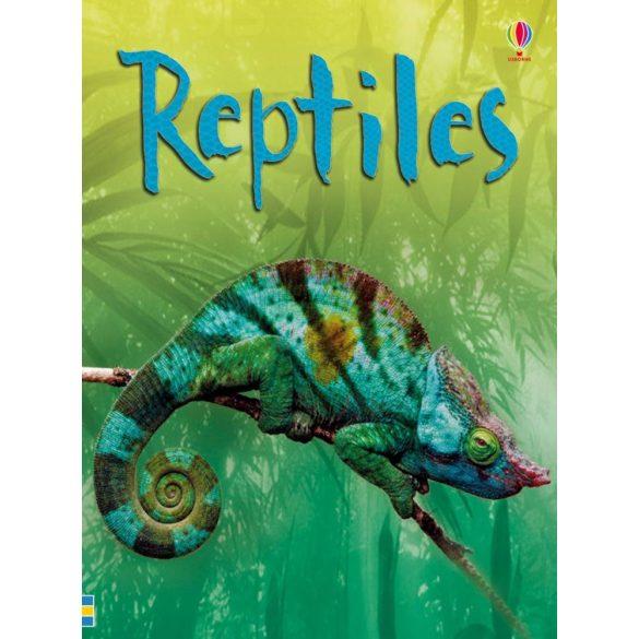 Beginners - Reptiles