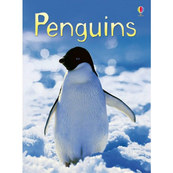 Beginners - Penguins