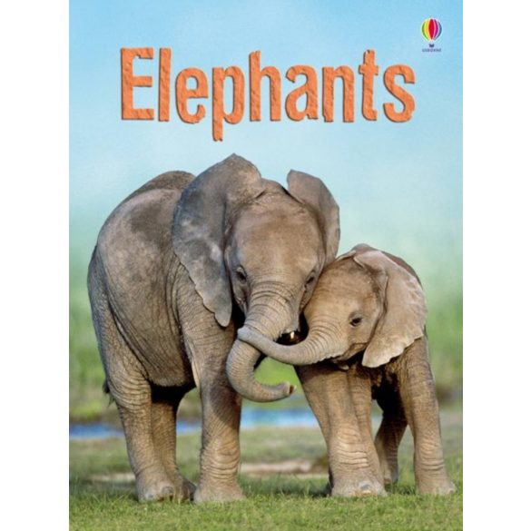 Beginners - Elephants
