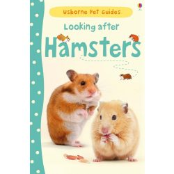 Looking After Hamster