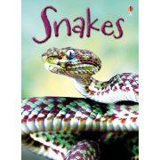 Beginners - Snakes