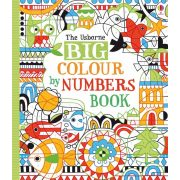 Big Colour by Numbers Book