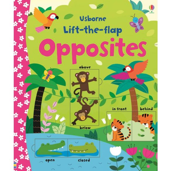Lift-the-flap opposites