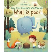 What is poo?