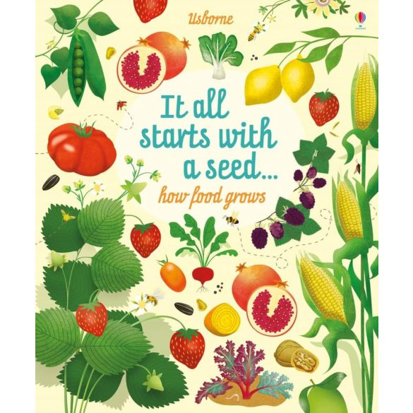 It all starts with a seed… how food grows