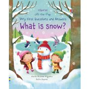 Lift-The-Flap Very First Questions And Answers: What is snow?