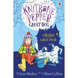 Knitbone Pepper ghost dog - A rabbit called Wish