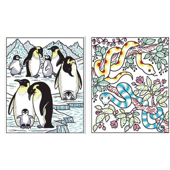 Magic Painting Animals
