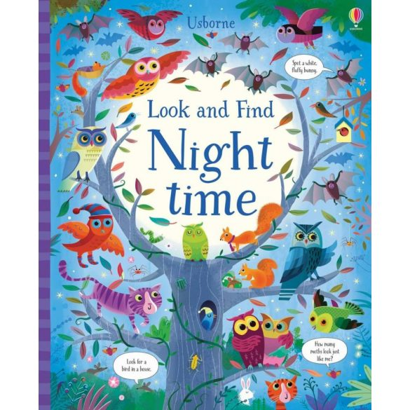 Look and find - Night time