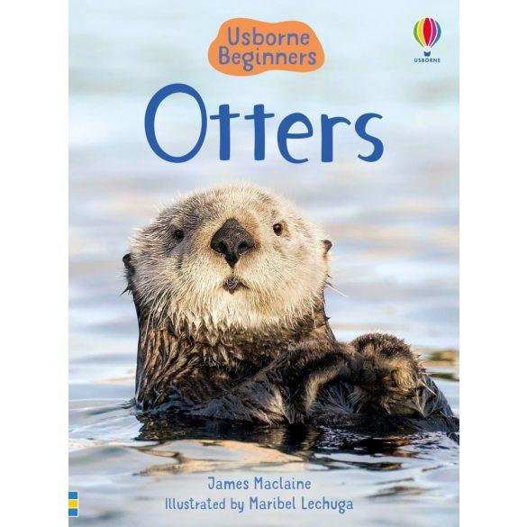 Beginners - Otters
