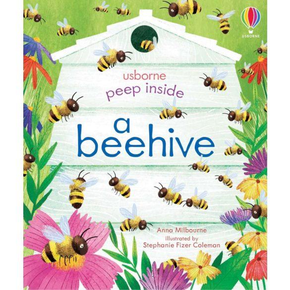 See Inside Beehive