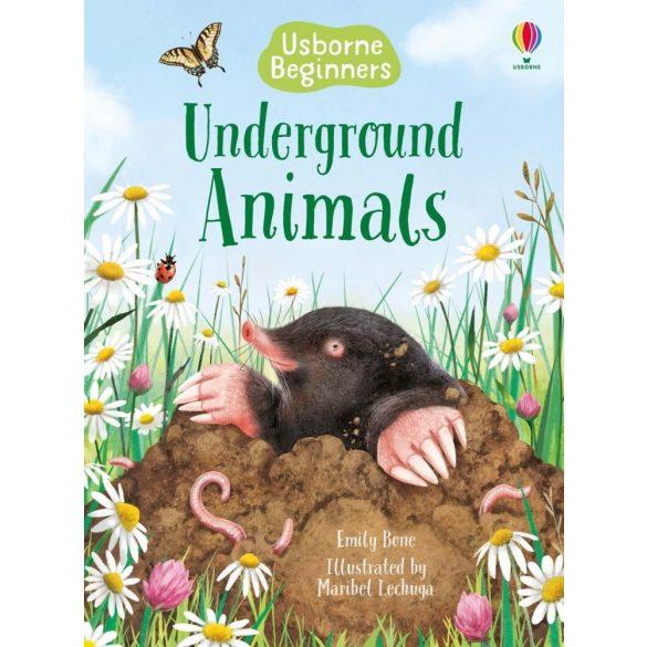 Beginners - Underground Animals