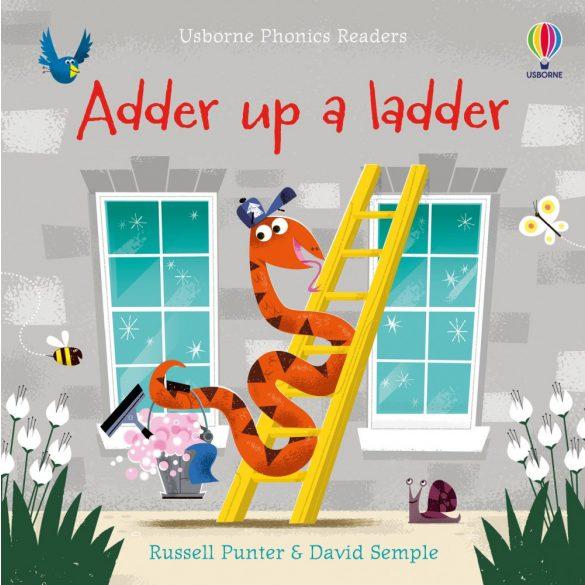 Adder up a ladder