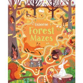 Maze books
